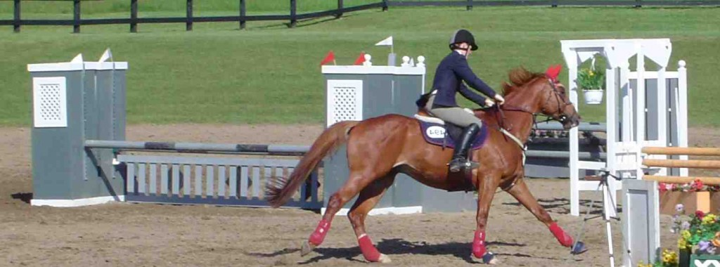Picture of girls riding horse in competition